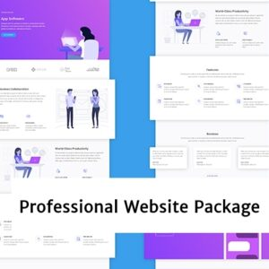Professional Website Package